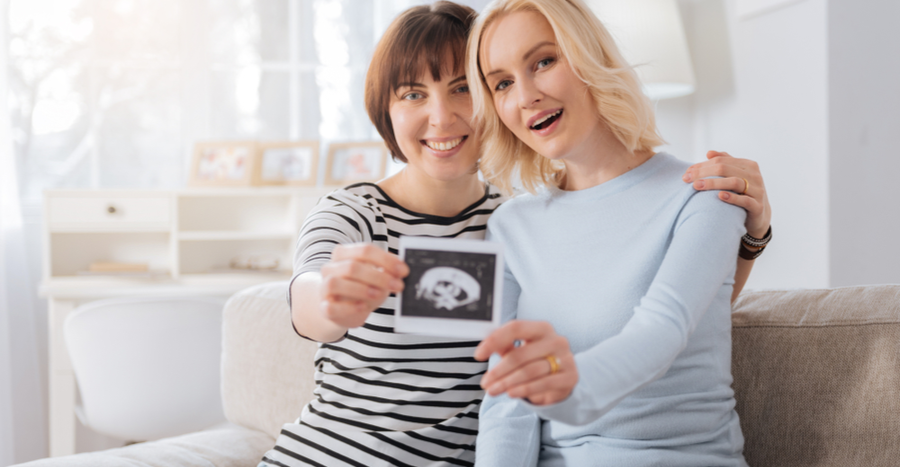 Lesbian Parent Options, Lesbian Parent Options