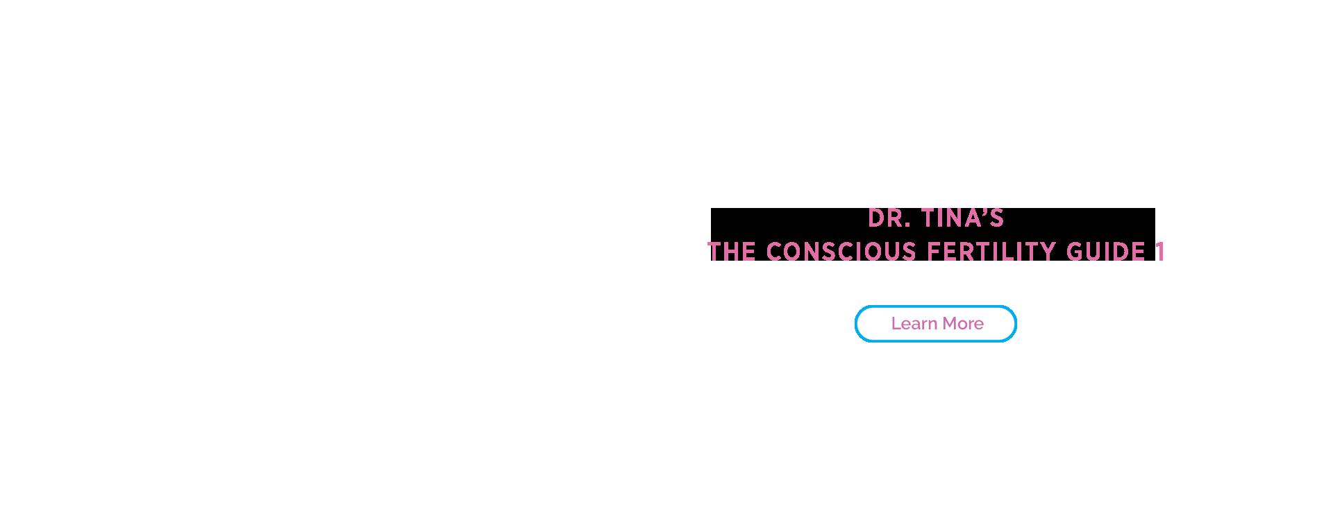 , Conscious Fertility Guide 2020